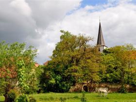 Kirche Frankenwinheim mit Pferd.